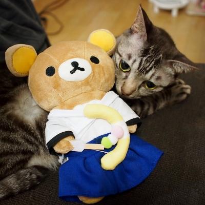 モカとリラックマ②