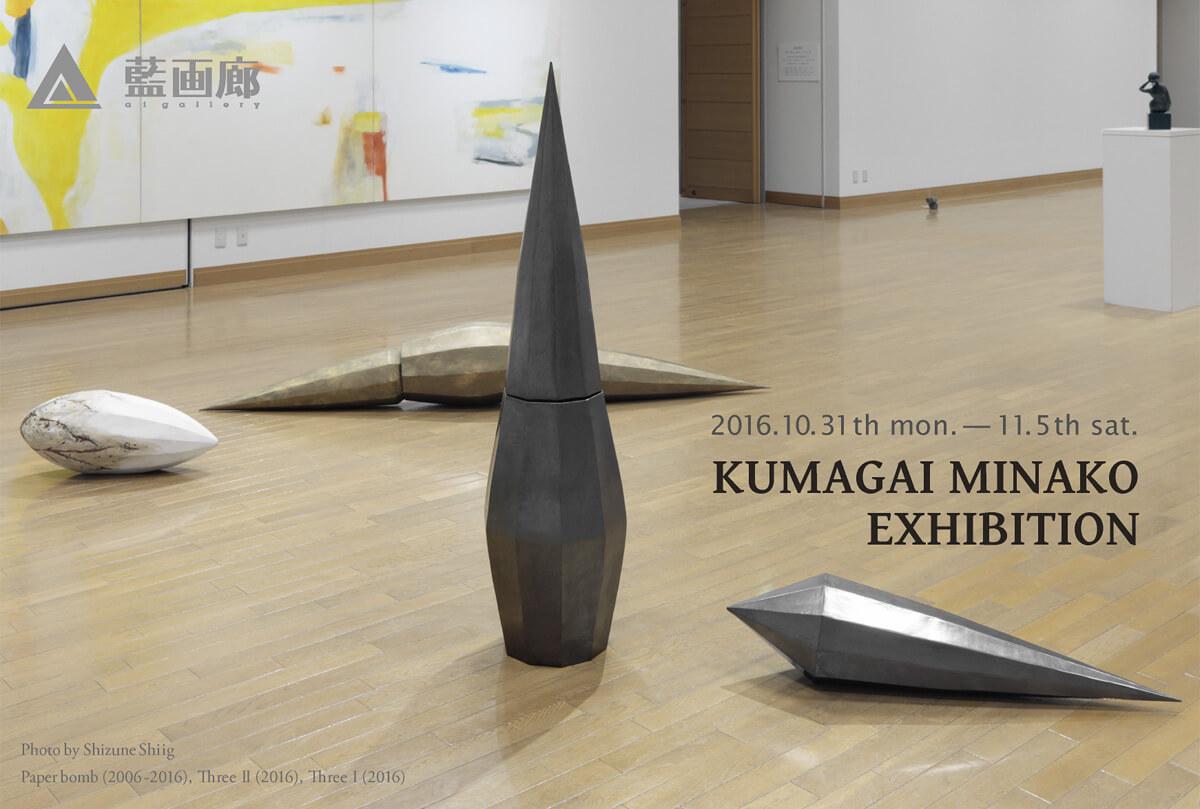 Kumagai2016DM_B.jpg