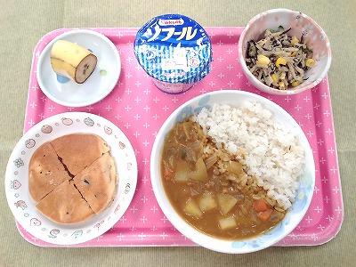 20160530幼児食