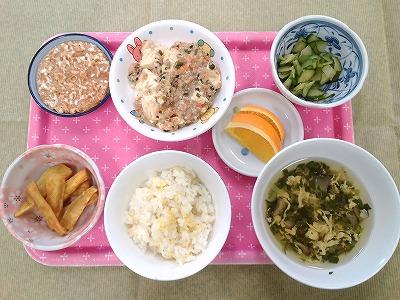 20160531幼児食