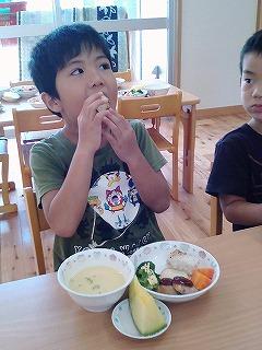 20160728幼児食