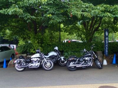 今回のバイク達。