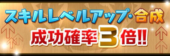 skill_seikou3x_20161028173634b49.jpg
