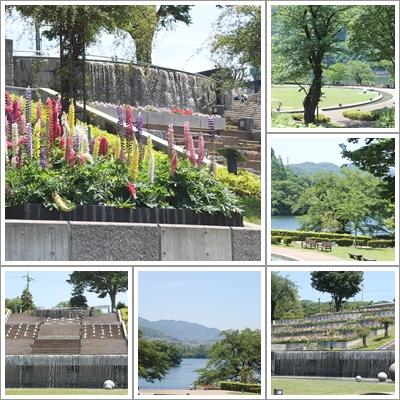 )津久井湖公園(2016_5