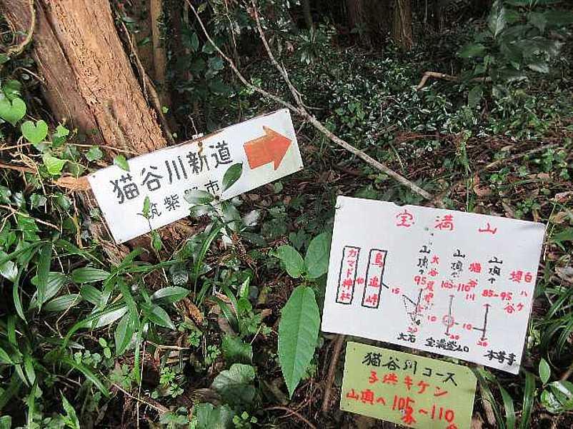 IMG4110JPG猫谷川新道入り口