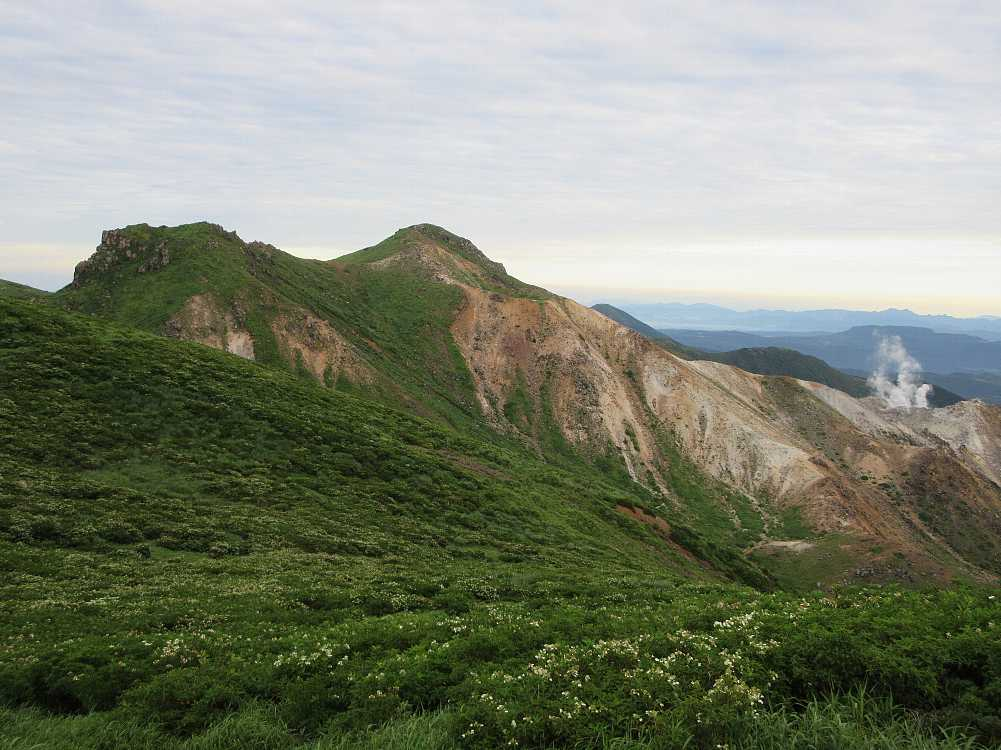 IMG4333JPGノリウツギと星生山