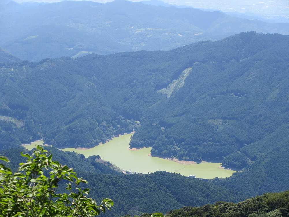 IMG4620JPG黄緑化した江川ダム