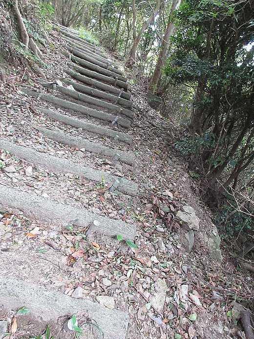 IMG4692JPG牝鋤先山への急登の疑木段が続く
