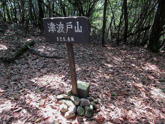 IMG4897JPG平頂の津波戸山