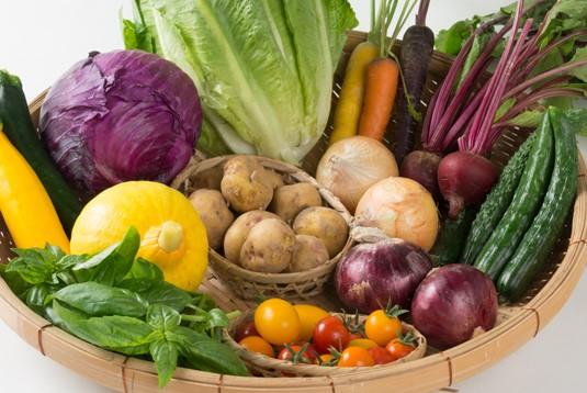 野菜の宅配セット