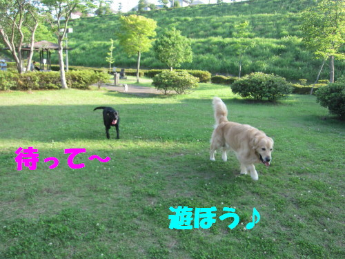 IMG_2849.jpg