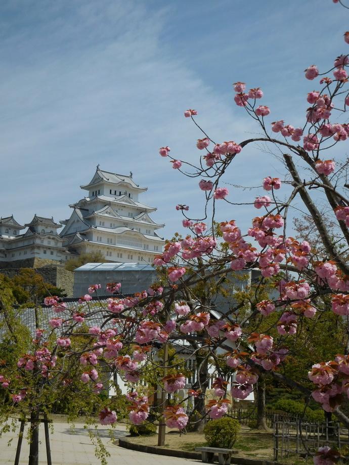 160416城と花 (3)