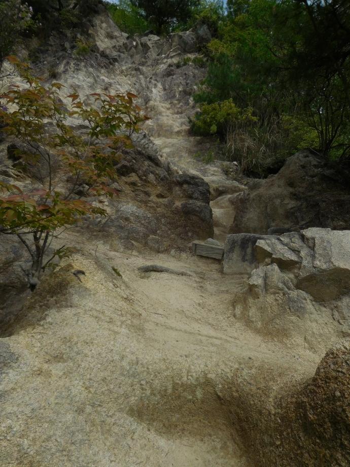 160423岩登り (1)