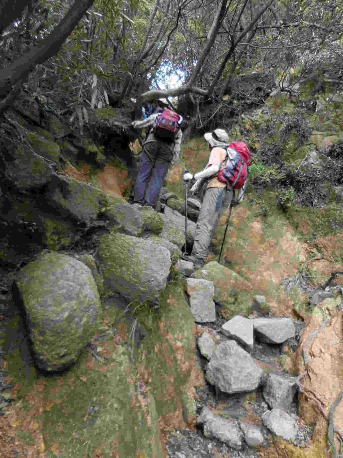 160423岩登り (3)