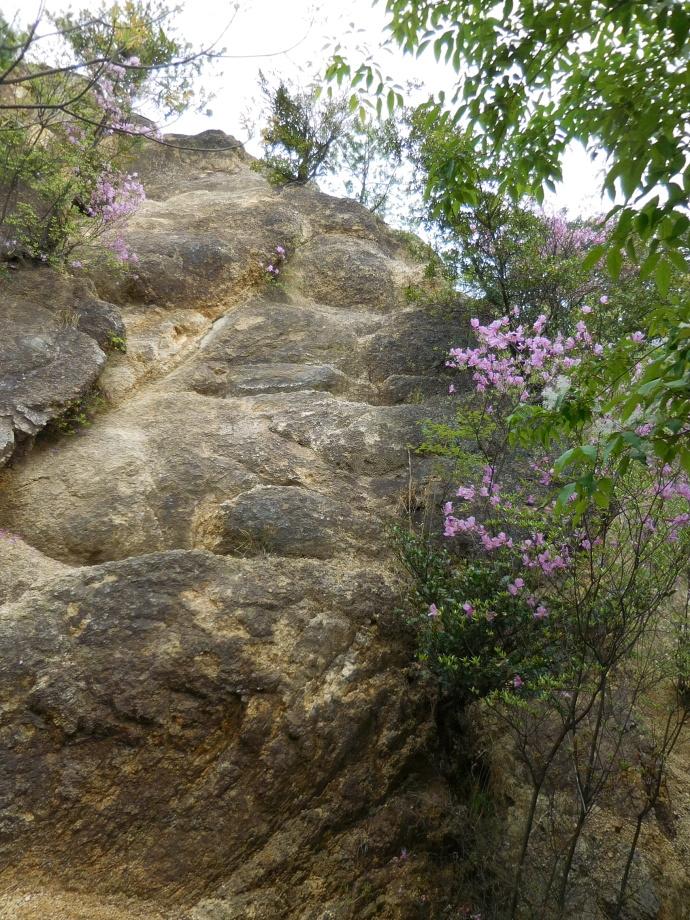 160423岩登り (5)