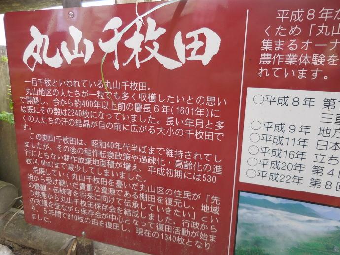 160503熊野千枚田 (3)