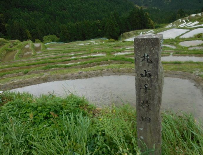 160503熊野千枚田 (7)