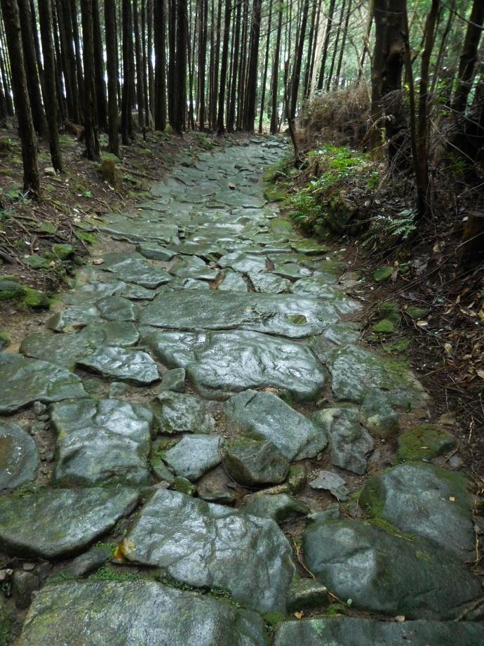 150912 古道歩き (2-8)