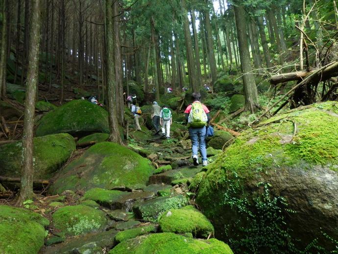150912 古道歩き (10)