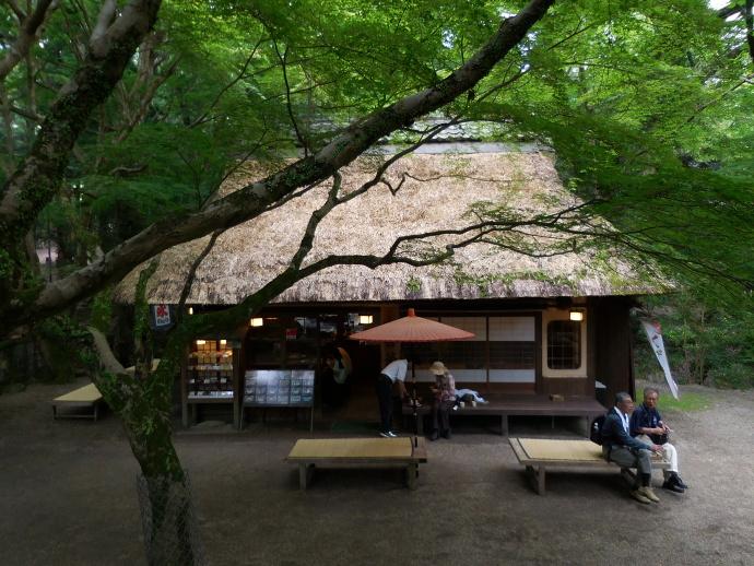 160528奈良街 (9)