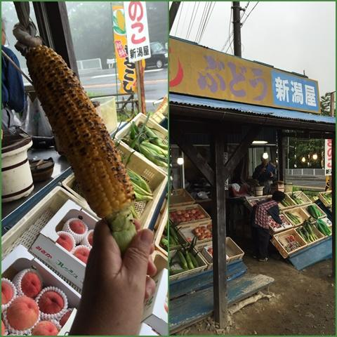 toumorokosi_convert_20160715220927.jpg