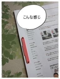 IMG_7449.jpg