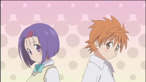OVA (1)