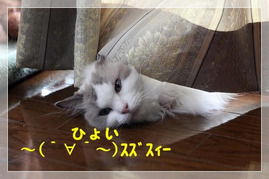 s-160804s-160804IMG_6591-1.jpg