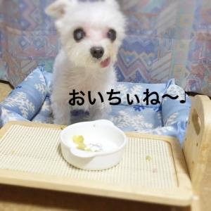 161024_4.jpg