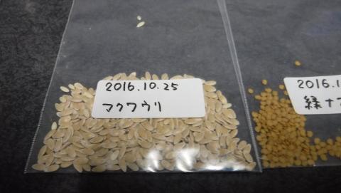 2016.10.25夕食9