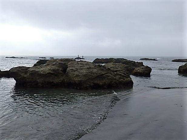 P7020062.jpg