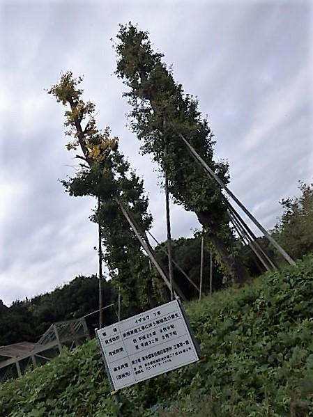 PA160012.jpg