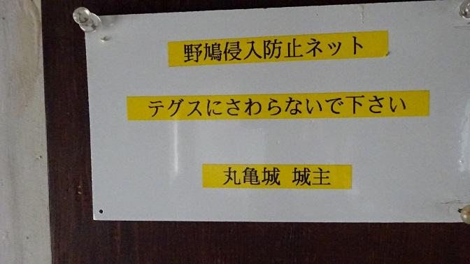 DSC01059 - コピー