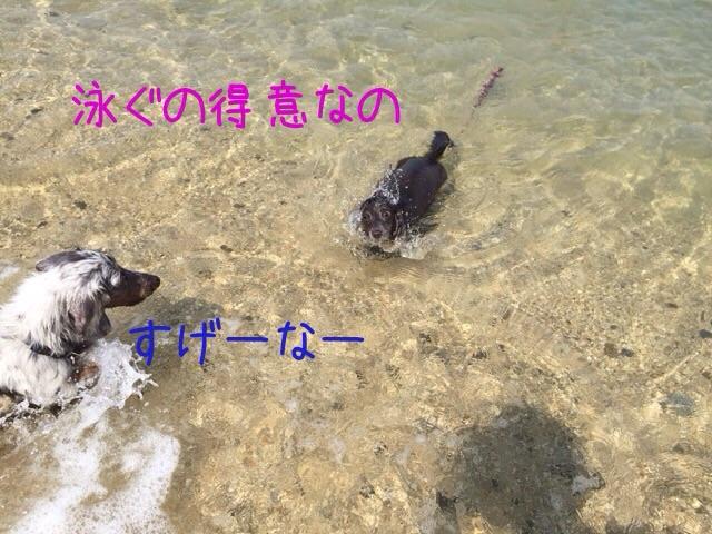 201608190959064a5.jpg