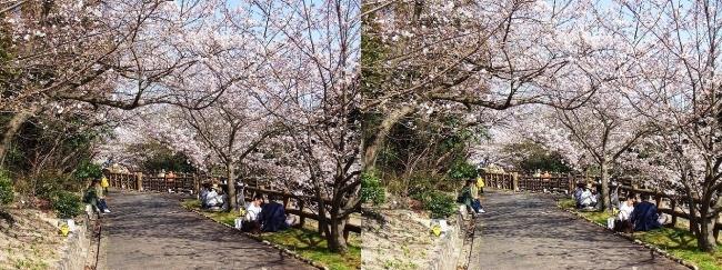 須磨浦公園 西エリア⑥(平行法)
