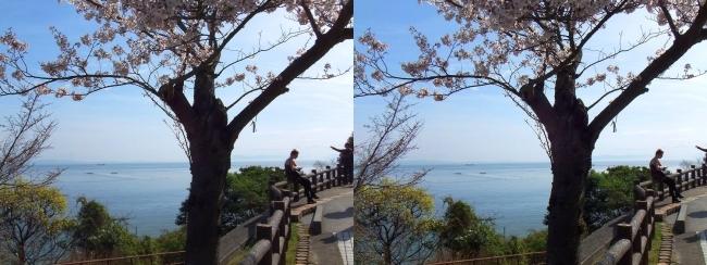 須磨浦公園 西エリア①(平行法)