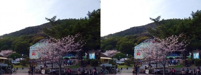 須磨浦公園駅前④(平行法)