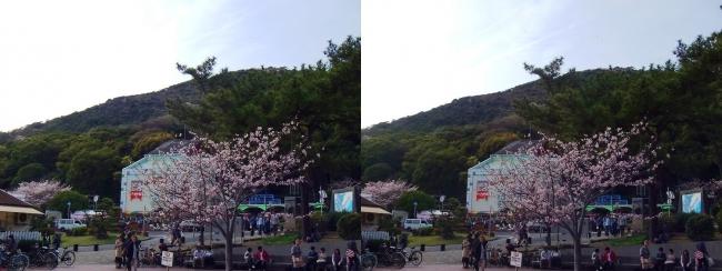 須磨浦公園駅前④(交差法)