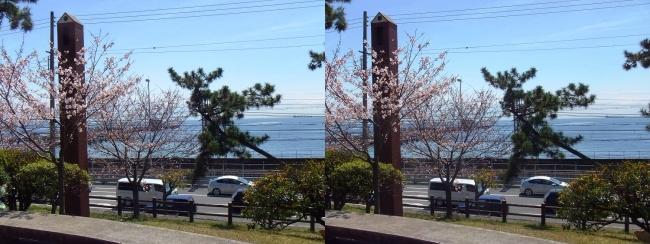 須磨浦公園駅前①(交差法)