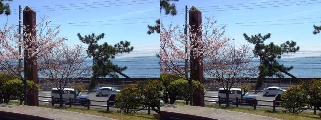 須磨浦公園駅前①(平行法)