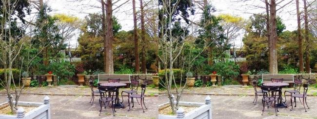 須磨離宮公園 植物園 花の広場②(平行法)