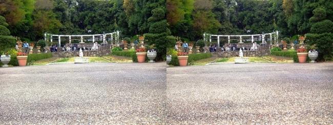 須磨離宮公園 植物園 花の広場①(交差法)