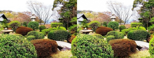 須磨離宮公園 植物園 和庭園④(平行法)
