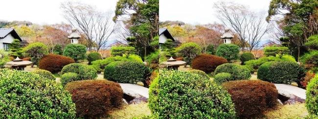 須磨離宮公園 植物園 和庭園④(交差法)