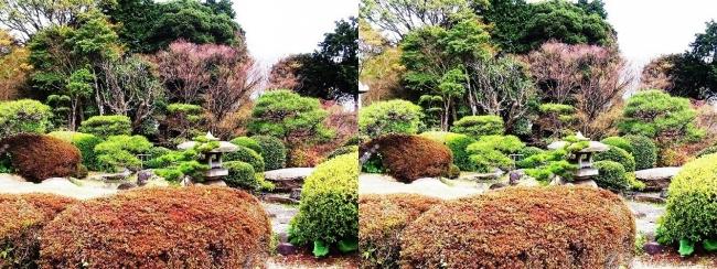 須磨離宮公園 植物園 和庭園②(平行法)