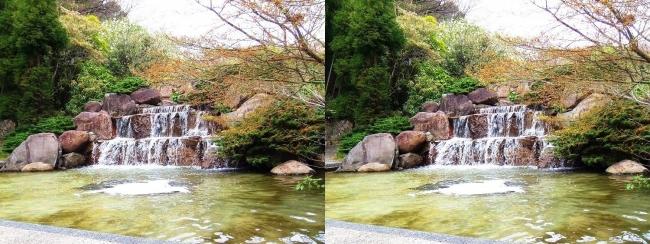 須磨離宮公園 植物園 三段滝(平行法)