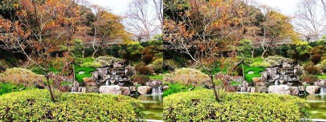 須磨離宮公園 植物園 みどり滝(平行法)