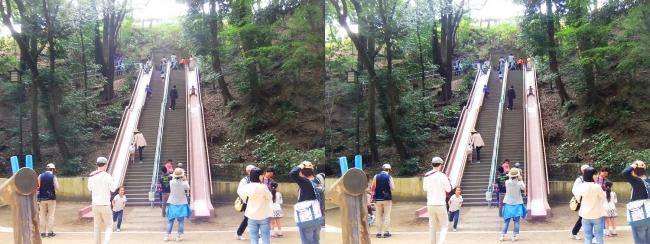 須磨離宮公園 児童遊園 ジャンボすべり台(平行法)