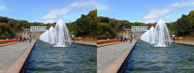 須磨離宮公園 噴水広場 キャナル小噴水②(平行法)