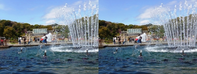 須磨離宮公園 噴水広場 大噴水②(交差法)